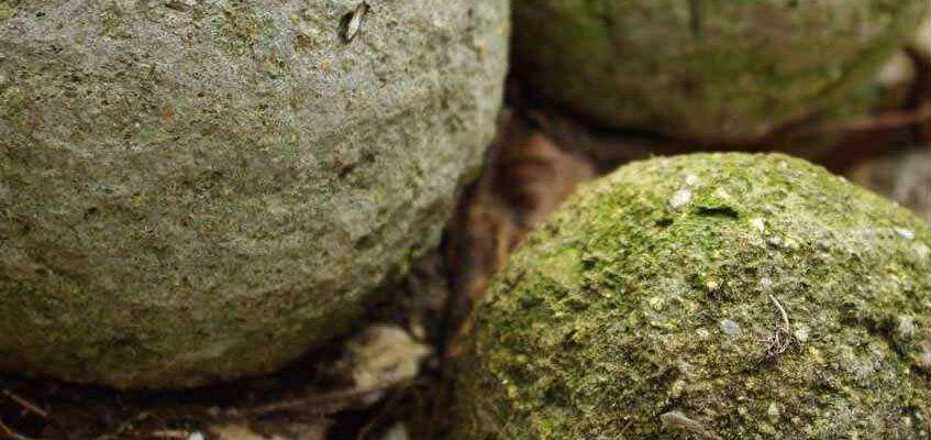 Jak zrobić sztuczne skały z hypertufy poradnik