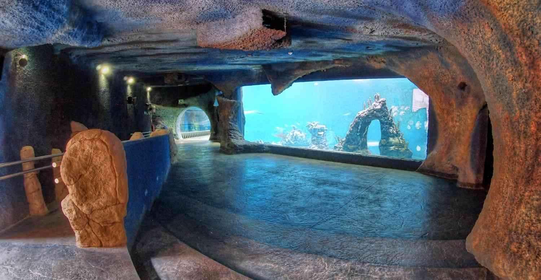 Sztuczna grota i rafa koralowa przy akwarium