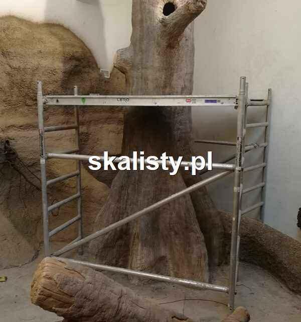 Sztuczne drzewo i przekroje glebowe