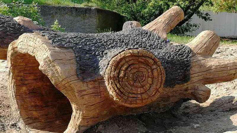 Sztuczny pień drzewa wykonany z betonu w łódzkim zoo orientarium